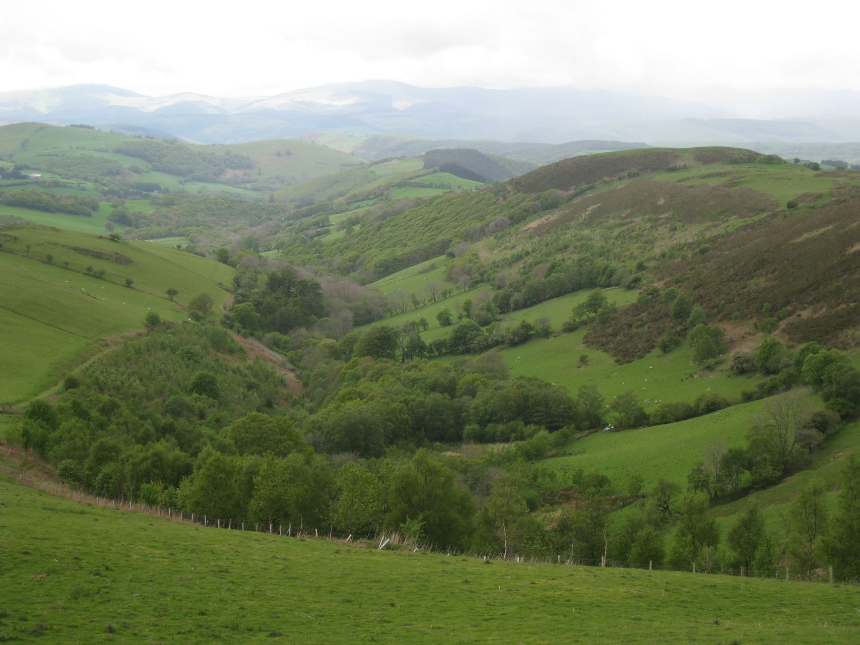 Day 4 - Looking down into Afon Dulas valley on massively steep climb up © Paul Bonwick