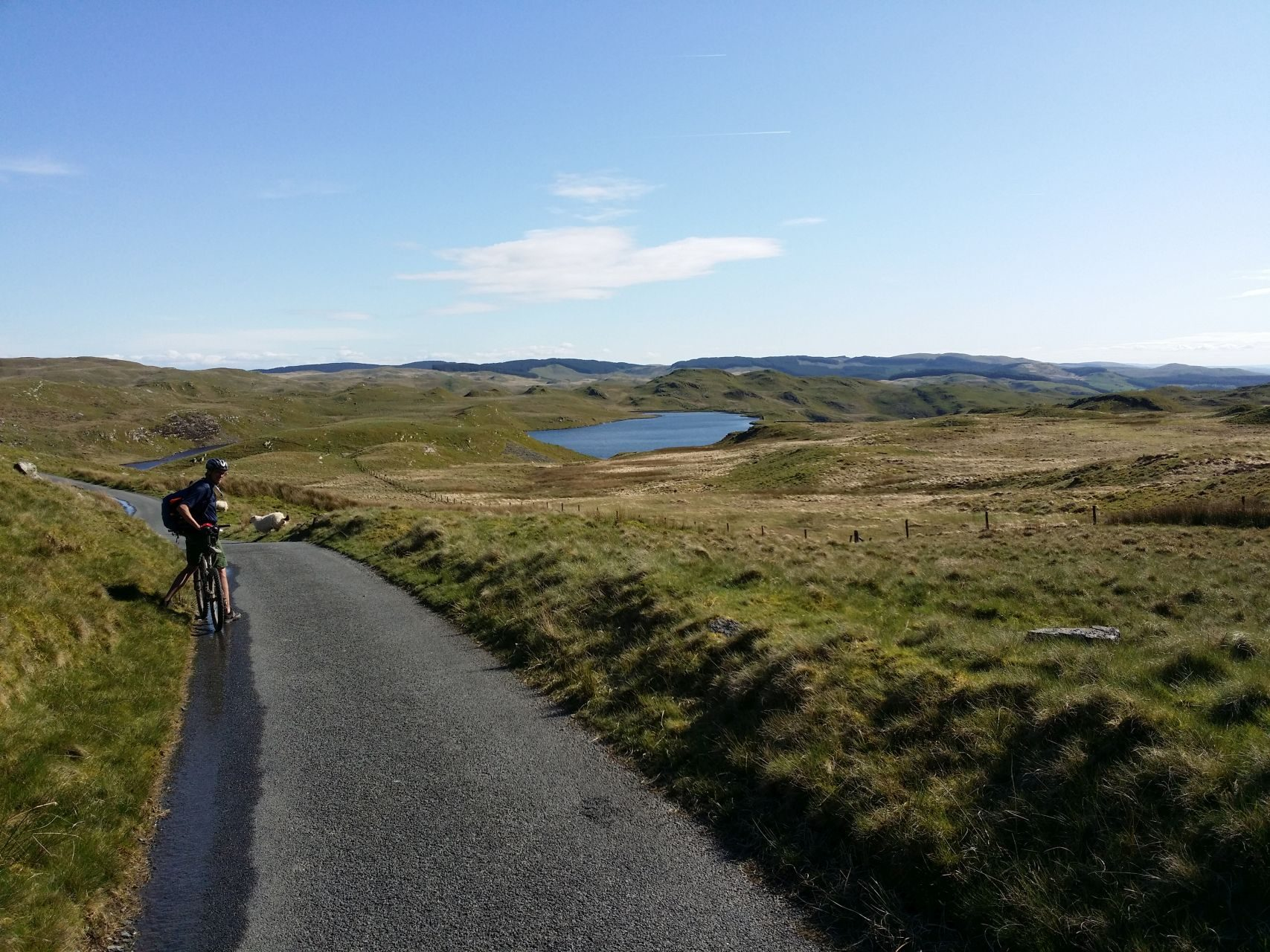 Day 5 - Open moorland between Coed Bwylchgwallter woodland and Elan Valley