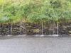 Day 2 - Cwm Penmachno valley in the rain