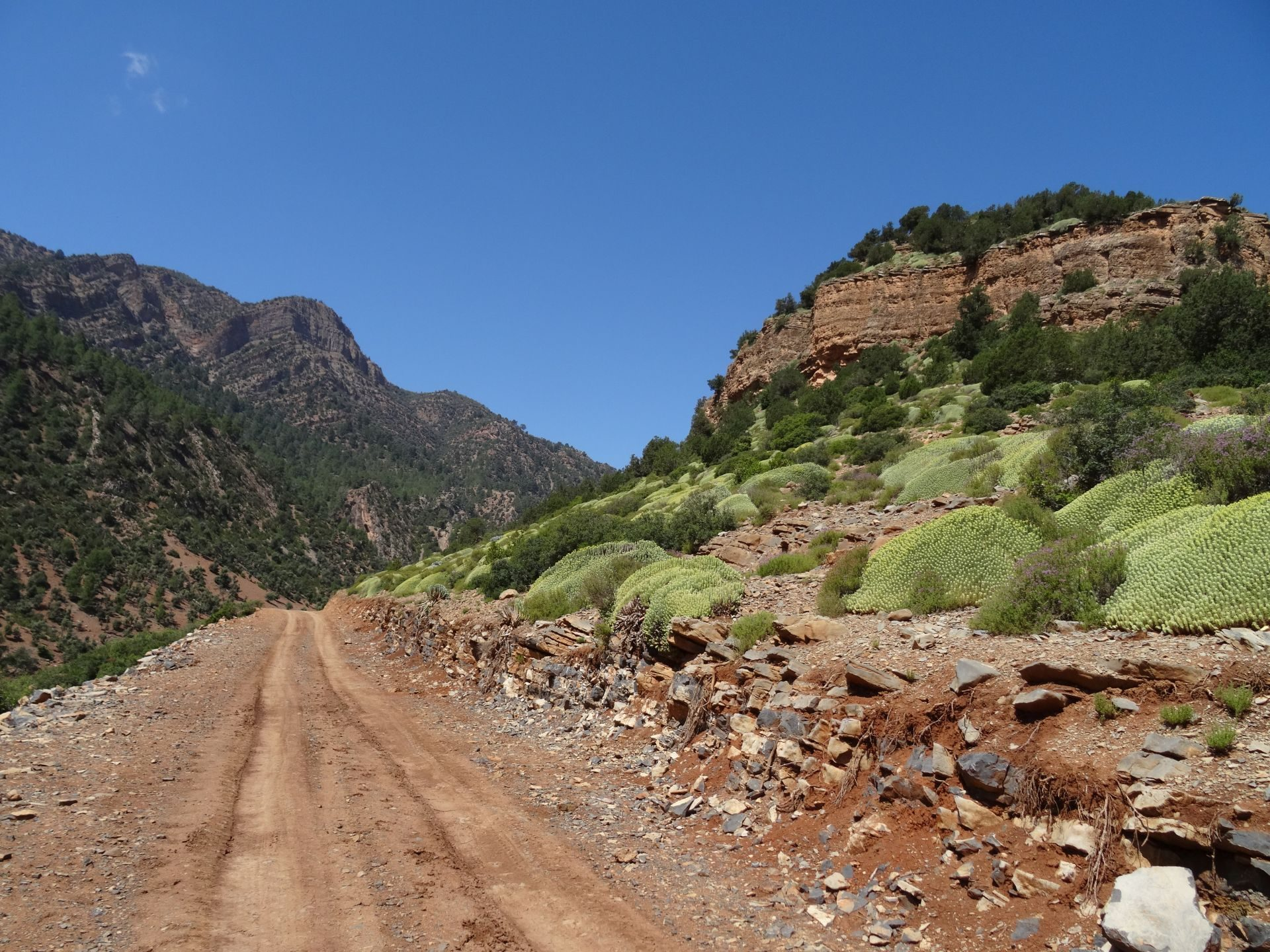 Day 2 - It is getting hot! (wow, is it getting hot ...) Above Assif Melloul gorge. © Steve Woodward