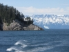 Seward Glacier Cruise - I like this picture (really!)