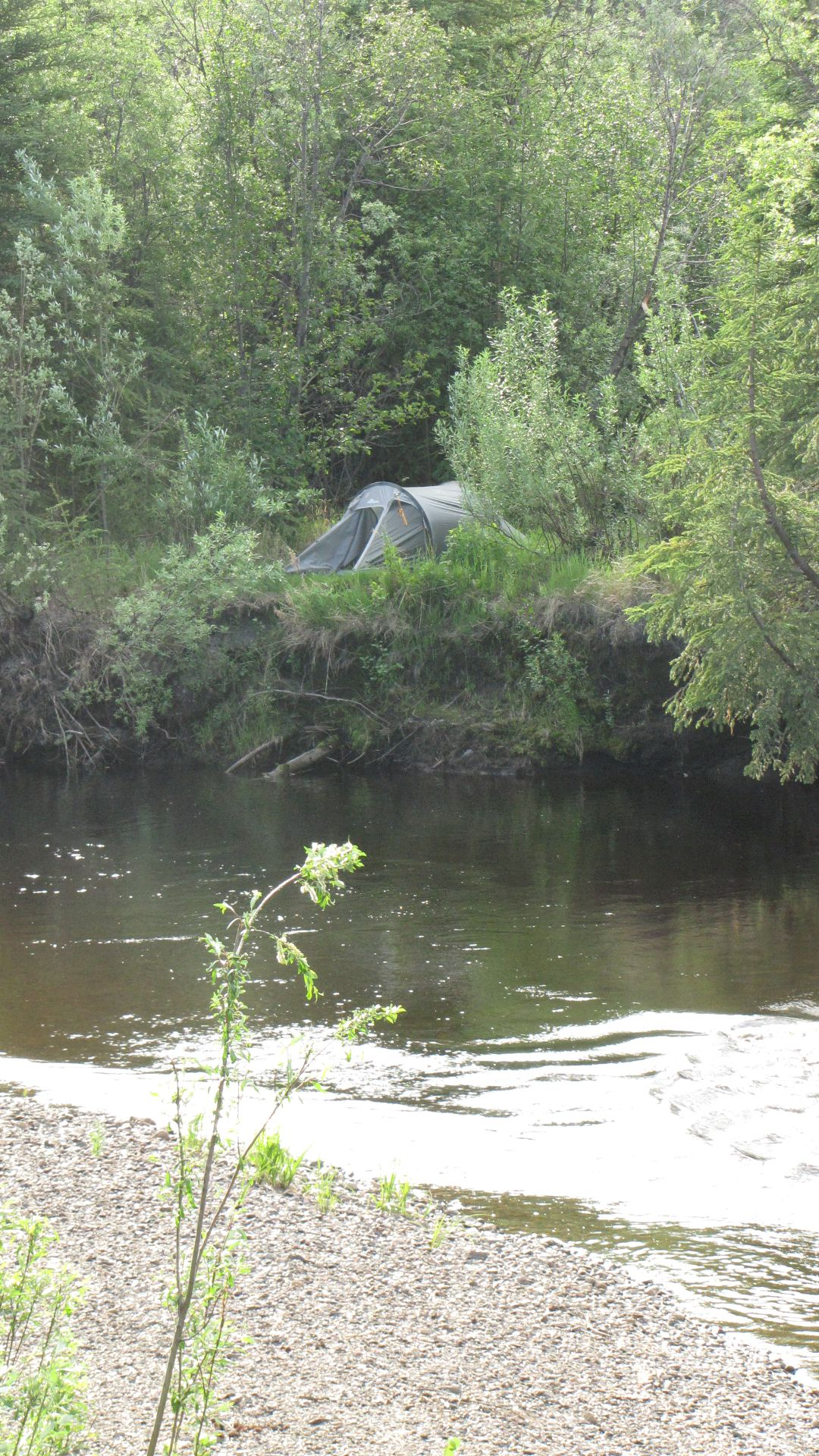 Colorado Creek Traihead - Last night of Camping before Fairbanks & it was a good \'un - tent up on river bank in middle...