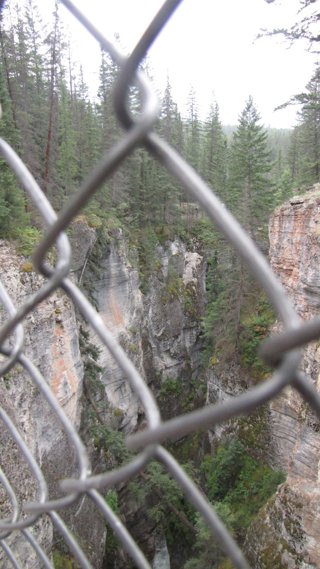 Maligne Canyon, Jasper Nat Pk, Alberta, Canada - Caged Wilderness...