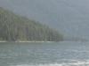 Maligne Lake, Jasper Nat Pk, Alberta, Canada - Hello Duck(y)